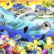 Delfiner i rev, fyrkant 60x50cm