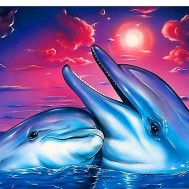 Delfiner, fyrkant 50x40cm
