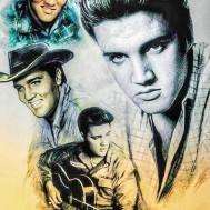 Elvis, fyrkant 40x60cm
