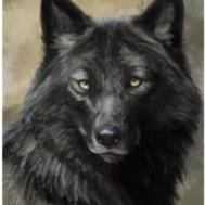 Varg svart, fyrkant 30x40cm