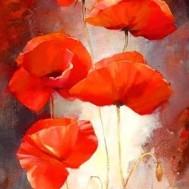 Blommor vallmo, fyrkant 40x60cm