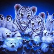 Tiger vänner blå, fyrkant 60x50cm