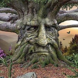 Träd, fyrkant 50x50cm -