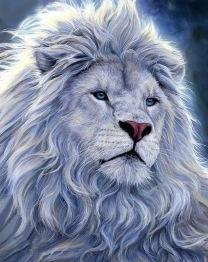 Lejon Astlan, fyrkant 40x50cm -