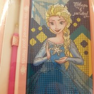 Dagboken Elsa Frozen