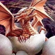 Drake ägg, rund 40x50cm