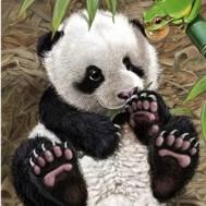 Panda, rund 25x30cm