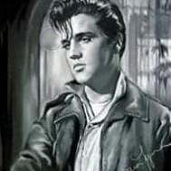 Elvis, fyrkant 40x50cm
