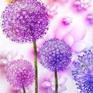 Blommor, rund 50x60cm
