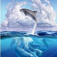 Delfiner, rund 40x50cm