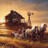 Häst och bonde