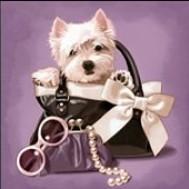 Hund i väska, fyrkant eller rund 30x30cm