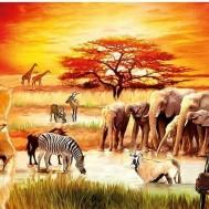 Afrika, fyrkant 70x50cm