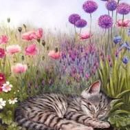 Katt i gräs, fyrkant 40x50cm