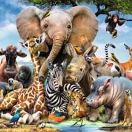 Afrika savann djur, fyrkant 70x50cm