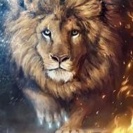 Lejon, fyrkant 40x50cm