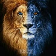 Lejon varm och kall, rund eller fyrkant 50x60cm