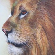 Lejon hanne profil, rund eller fyrkant 40x50cm