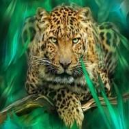Leopard, rund eller fyrkant 50x50cm