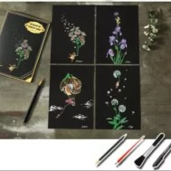 Scratch painting 4 pack blommor