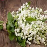 leveranstid 1,5-2v,Diamondpainting, diamant tavlaDiamondpainting - Diamanttavla blommor liljekonvalj 30x40cm fyrkant