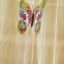 Mygg & Flugnät Fjärilar