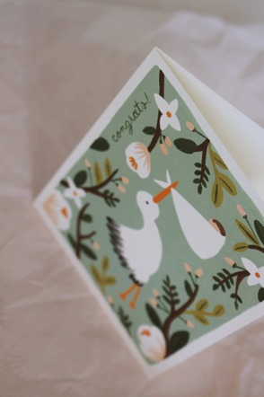 Congrats Stork Card RIFLE PAPER
