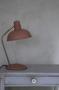 Bordslampa dimrosa