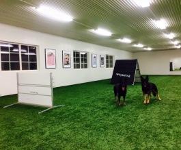 Fredstorps hundsporthall
