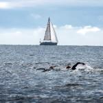 hdbildsimmaresegelbåt bakgrund