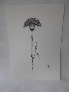 Konsttryck/ prints. Blomma - Prints på finare papper. A3 Blomma