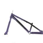 Czar Neuron Pro 24 frame purple