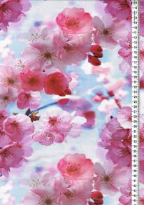 Digitaltryck - Körsbärsblom Digitaltryck 92% BOMULL 8% ELASTAN BREDD 160 cm
