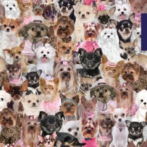 Hundar - Hundar