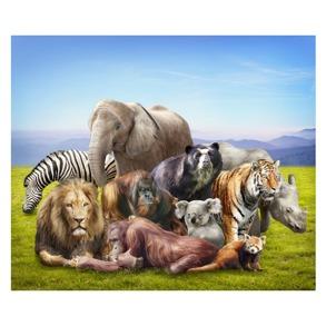 Vilda djur i bergen - Vilda djur i bergen
