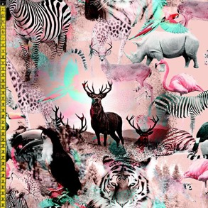 Vilda djur - Skogen djur