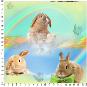 kaniner/regnbåge - kaniner/regnbåge