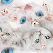 Digi trikå katt vit
