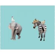Elefant/Zebra
