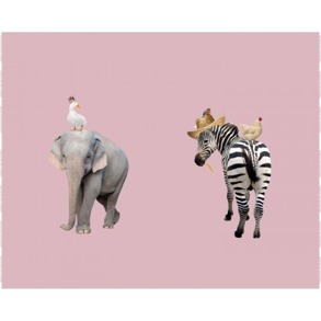 Elefant/zebra rosa - Elefant/zebra rosa