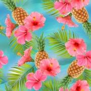 Ananas och hibiskus