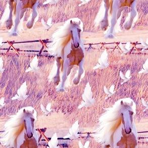 Häst och duva - Häst och duva