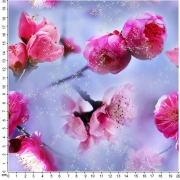 Rosa blommor
