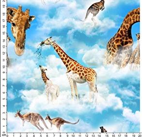 Giraffer - Giraffer