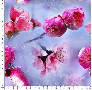 Rosa blommor - Rosa blommor