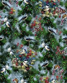Julfåglar - julfåglar