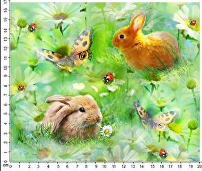 Kaniner på äng - Kaniner på äng