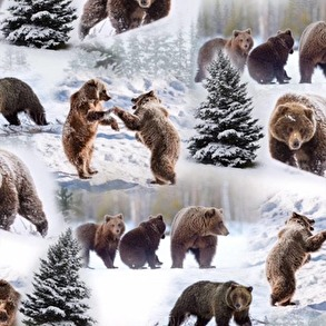 Björnar - Björnar