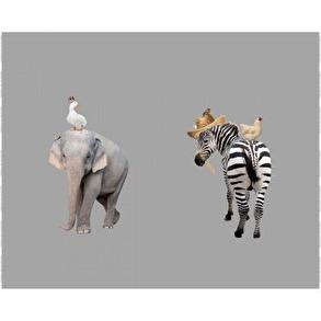 elefant/zebra Grå - elefant/zebra Grå