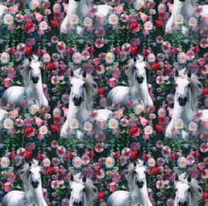 Häst drömmar - Häst drömmar